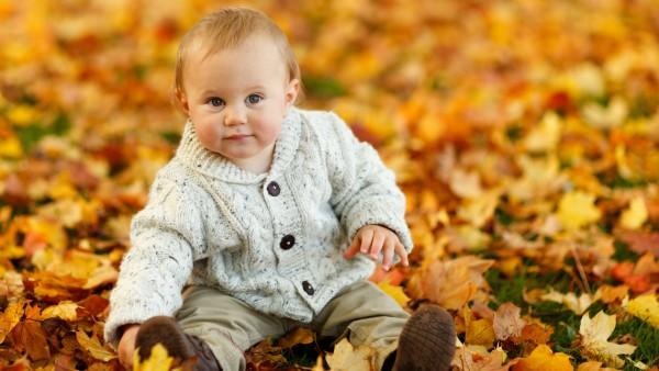 Милый ребенок, мальчик, Осенние листья, HD