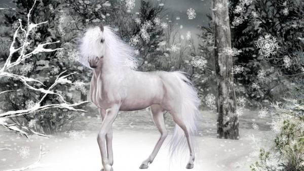 Красивая белая лошадь в лесу зимой