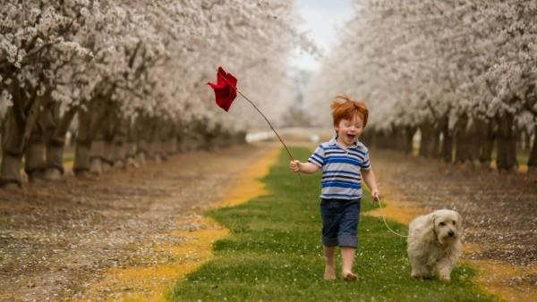 Веселый мальчик играет с собачкой весной обои дети