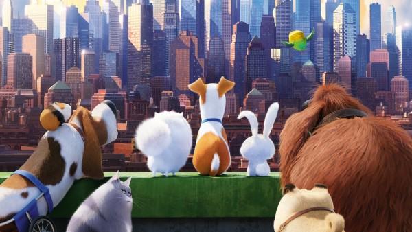 Питомцы, Тайная жизнь домашних животных, анимационная комедия, мультфильм