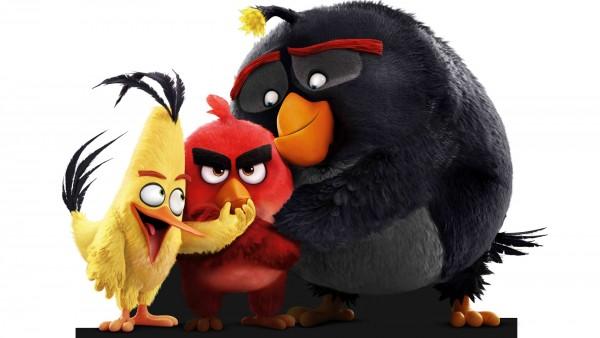 Злые птички три друга Ред, Чак и Бомб на белом фоне обои HD