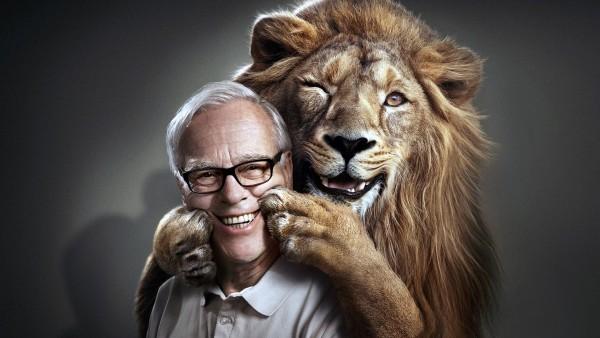 Смешные обои лев заставляет человека улыбаться