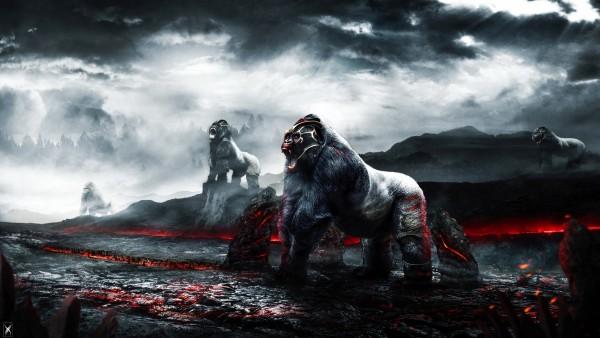 Воинственные гориллы обои HD