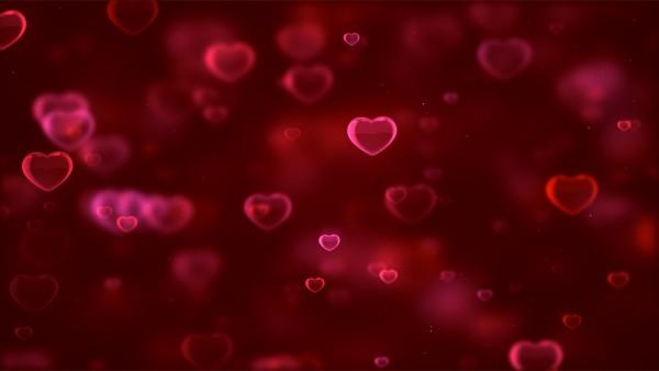 Романтика для рабочего стола обои любовь - Обои для рабочего стола ... | 338x600