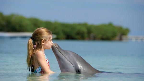 Картинки девочки и дельфина в море