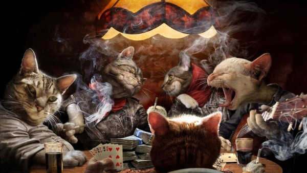 Коты играют в покер за столом и курят