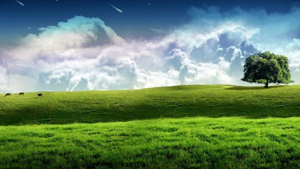 Красивая природа широкоформатные обои HD