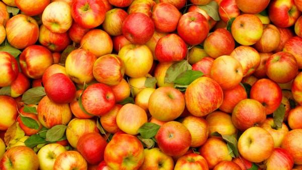 Гора из красных яблок
