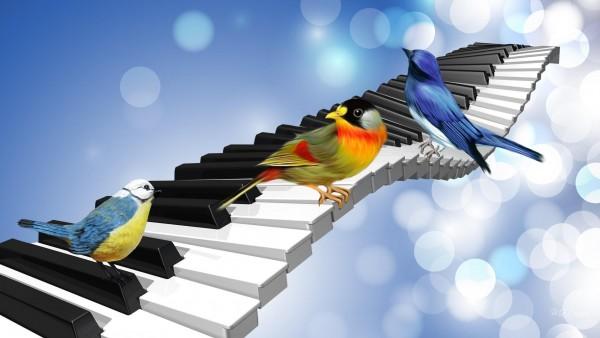 Птичья песня