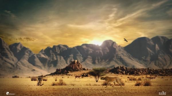 2560x1600, Дикая природа животные хищники в пустыне