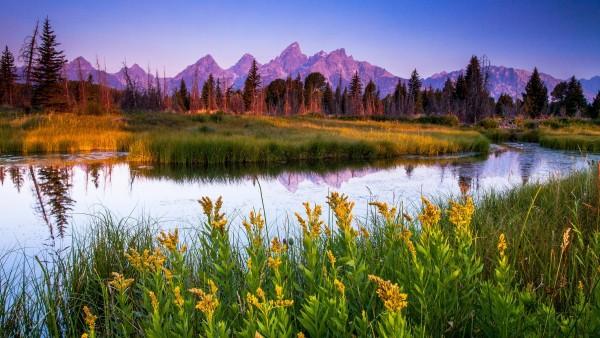 2560x1600,  Прекрасный весенний пейзаж горной далины