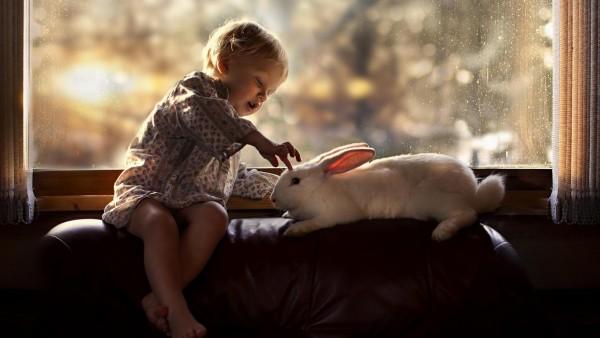 Маленький ребенок и кролик