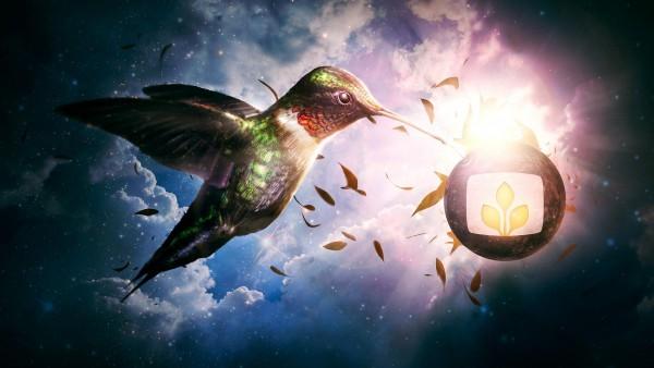 яркая птичка в облаках