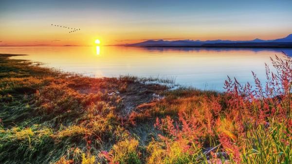 Красивые картинки природы скачать