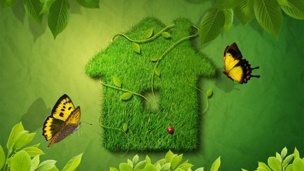 Креативный зеленый домик с бабочками на рабочий стол