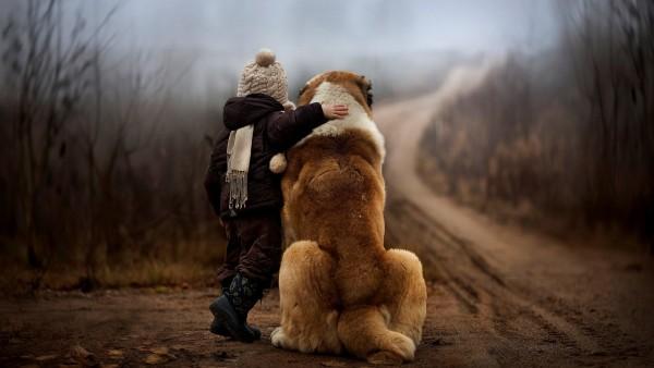 Огромная собака в обнимку с ребенком картинки на рабочий стол