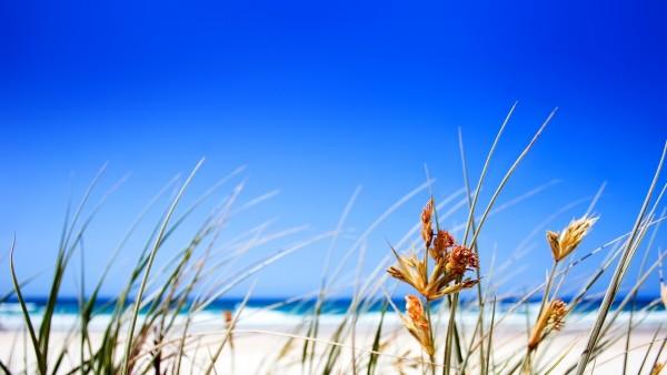 Море, песчаный пляж, голубое небо, солнце, картинки, скачать