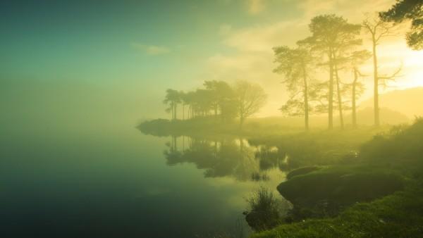HD обои Фото высокого формата с туманом