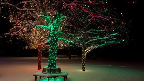 Новогоднее дерево, снег, зима, праздник, огни, фоны, заставки