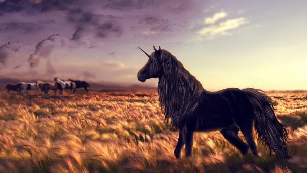 лошадь, единорог, гольф, искусство, трава, ветер, фоны, заставки