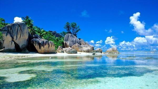 Море, пальмы, побережье, камни, валуны, тропики, фоны, заставки