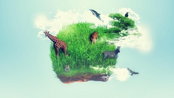 Остров, трава, жираф, животное, воображение, зебра, обои HD, картинки