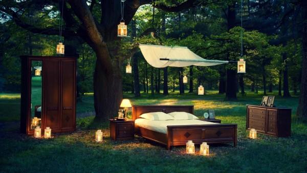 Перемещение кровати, комната, шкаф, настольные лампы, люстры, природа, лес