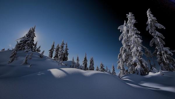 Склон, гора, зима, снег, лес, небо, обои для рабочего стола