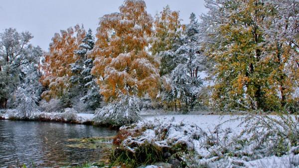 Природа, пейзажи, деревья, лес, мороз, озеро, трава, листья, картинки, обои, фоны