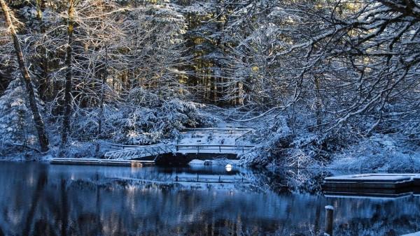 Картинки зимнего парка для рабочего стола