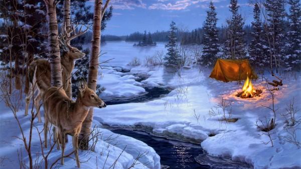 Тени, живопись, зима, снег, животные, олень ,картинки для рабочего стола