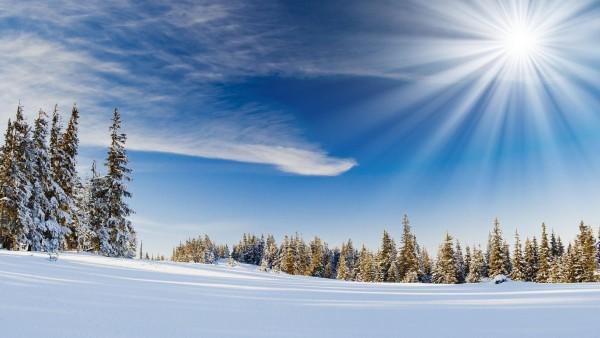 Природа, пейзаж, деревья, лес, зимний снег, солнечный свет, лучи, фото высокого качества