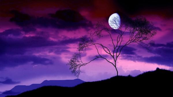 свет луны красивые обои скачать