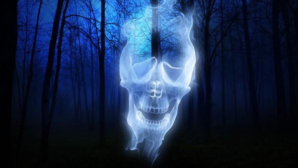 лес, череп, призрак, Хэллоуин