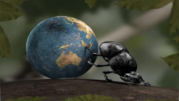 Красивые обои насекомого тащущего весь мир в своих пальчиках