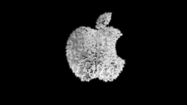 смешно, логотип, Apple