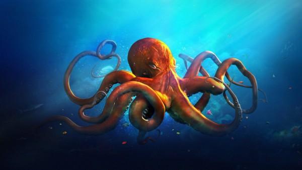 Подводный мир, Осьминог, океан, море