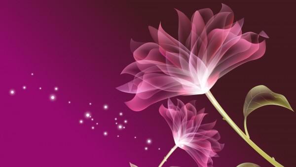 цветок, ветер, фоны, заставки