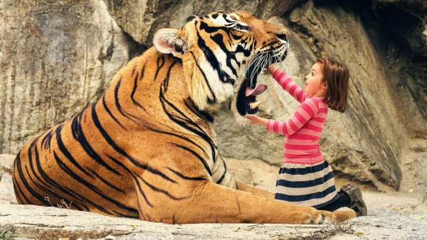 Скажи ААА тигр и ребенок обои