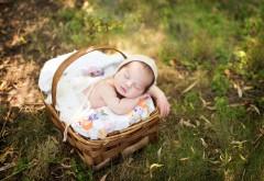 Малыш в корзинке на природе спит картинки