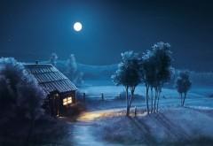 Голубая ночь полная луна в деревне