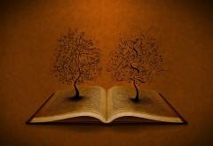 HD обои Деревья ростущие из древней книги