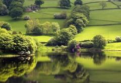 Река, трава, деревья, луг, холмы, фоны, заставки