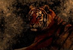 Тигр, рисованные, хищник, фэнтези, абстрактные, обои hd, бесплатно
