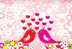любовные птицы HD обои для рабочего стола