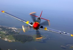 North American P-51 Mustang HD wallpaper