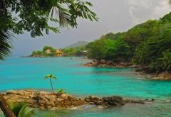 Море, скалистый берег, пальмы, пейзаж, Фон, HD, бесплатно