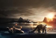 снежный барс HD, Ирбис, снежный леопард, хищники, рассве�…