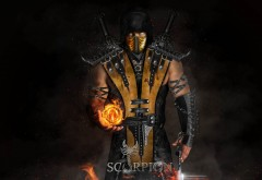 scorpion, скорпион, огненный шар, мартал комбат, игра, обои