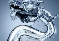 Water, Dragon, водяной дракон, абстрактные, фоны